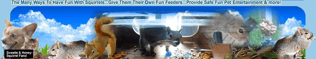 fun with squirrels header 2019