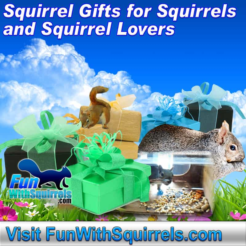 Squirrel Gifts for Squirrels and Gifts for Squirrel Lovers