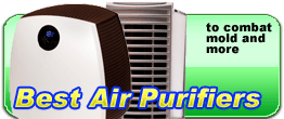 air purifiers to combat mold and more
