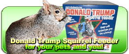 funny donald trump squirrel feeder
