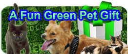 green pet gifts